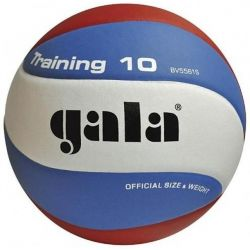 INDOOR TRAINING VOLLEYBALL GALA BV5561S