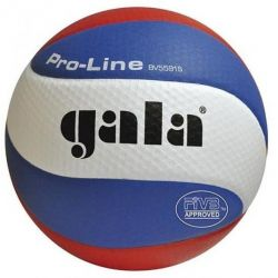 TOURNAMENT INDOOR VOLLEYBALL GALA BV5591S